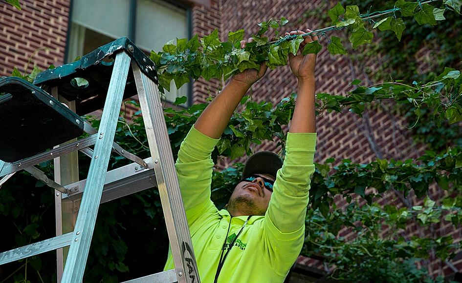seasonal landscaping job
