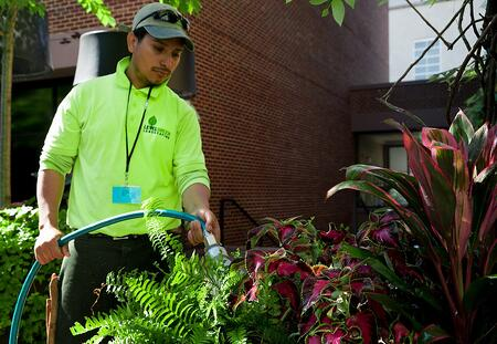 Graduate working at horticulture job