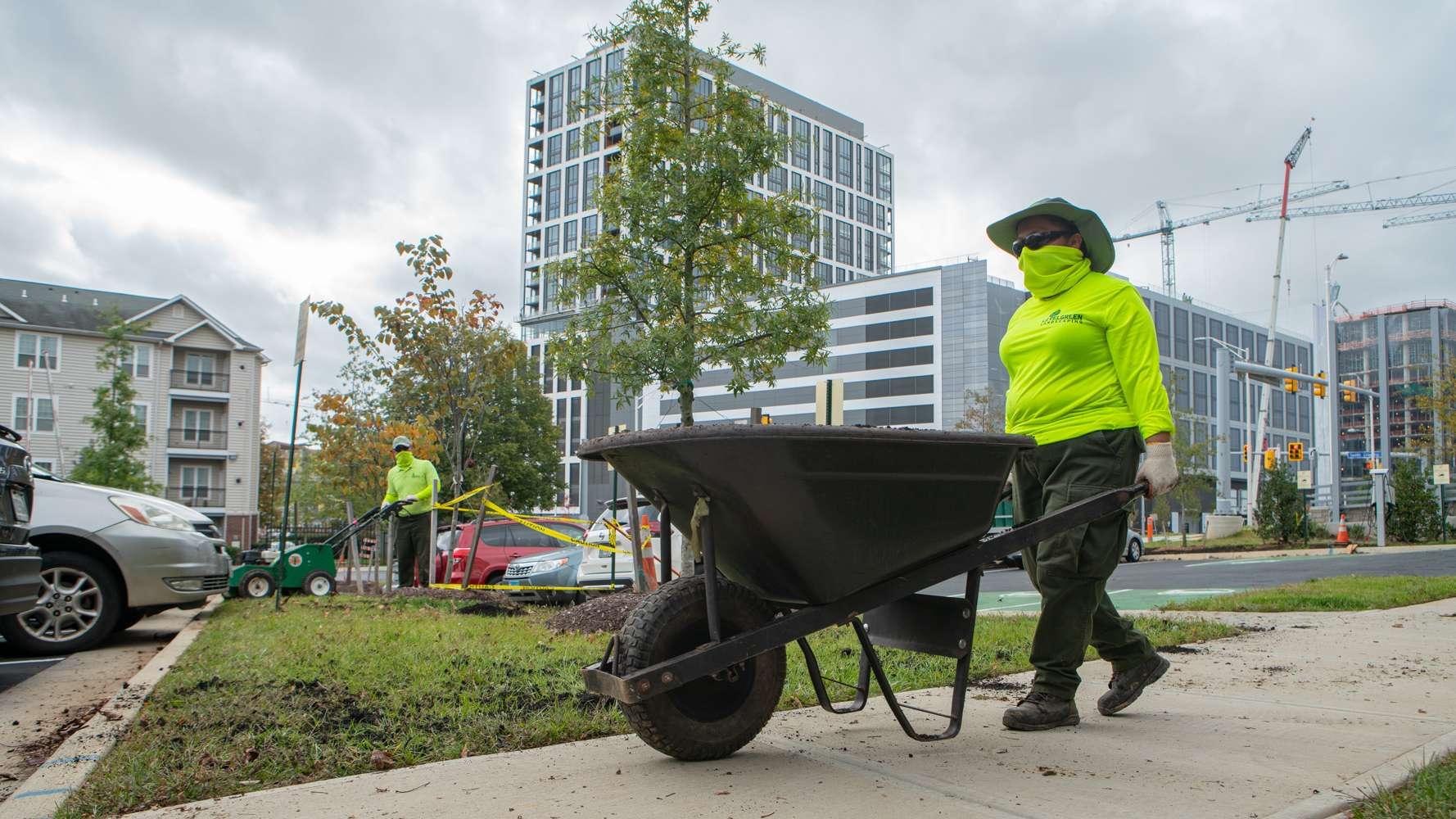 LevelGreen Commercial Landscaping Crew mulching