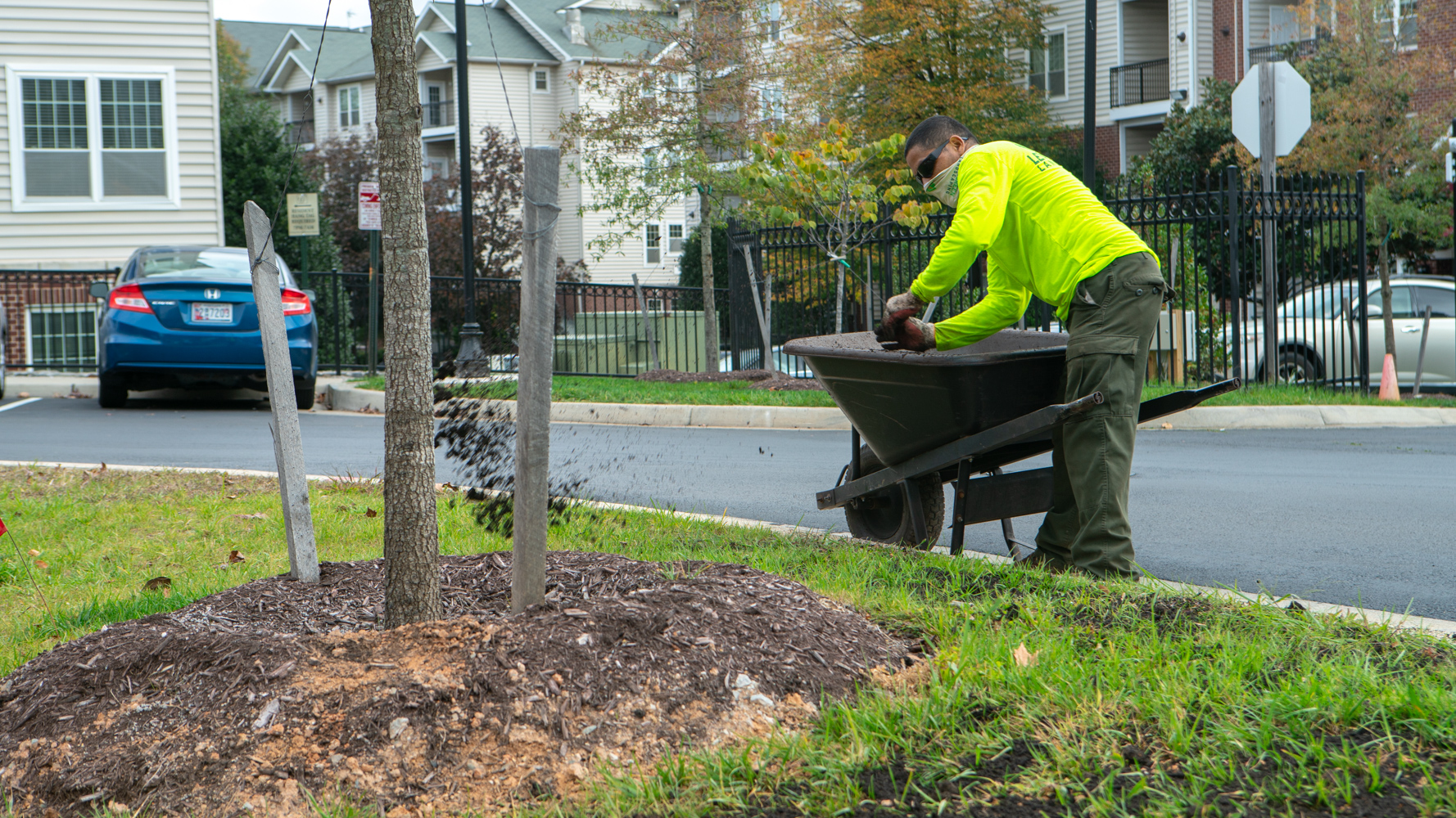 LevelGreen Commercial Landscaping crew mulching a tree