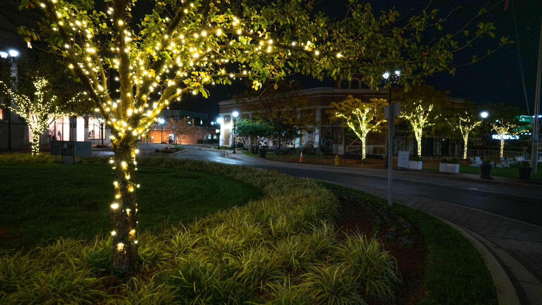 LevelGreen shopping center tree lighting lights landscaping lawn perennials grasses 2