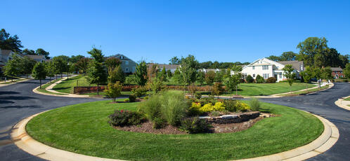 Landscape in Washington DC maintained by Level Green Landscaping
