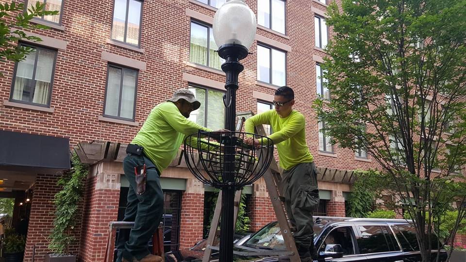 landscaping jobs that require no experience