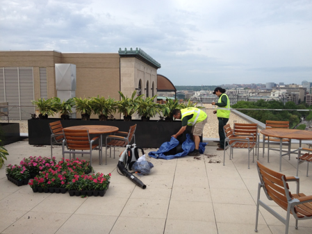 Landscaping Jobs in DC