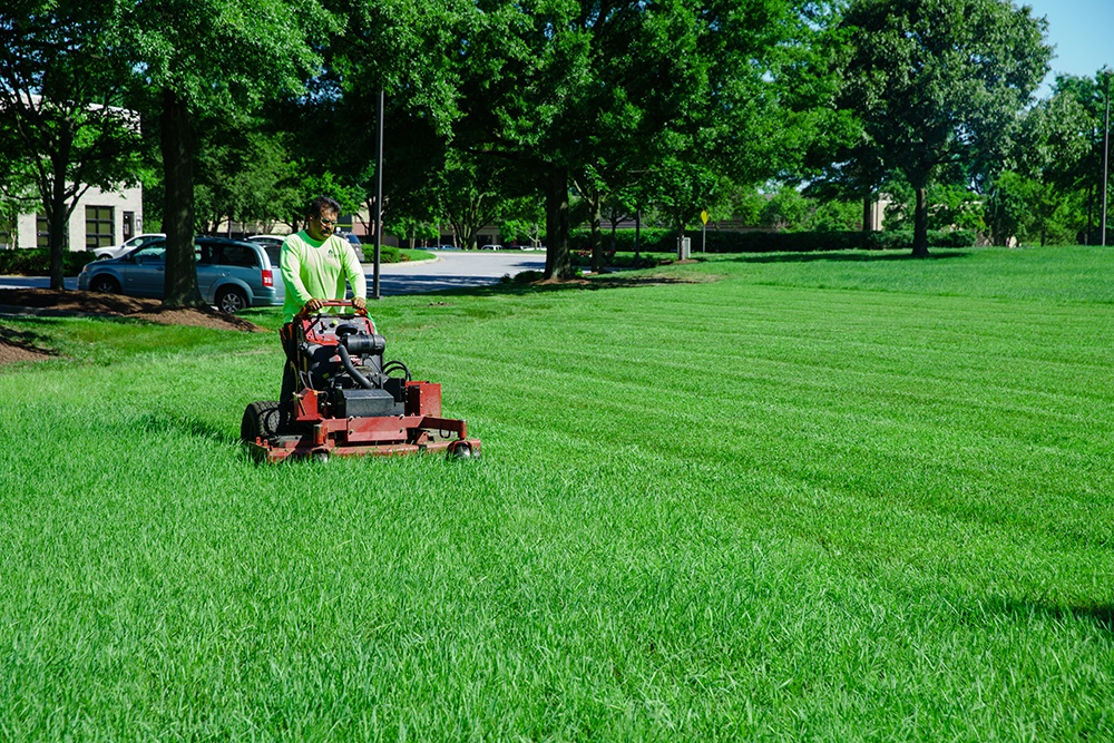 Commercial landscape maintenance services from Level Green Landscaping