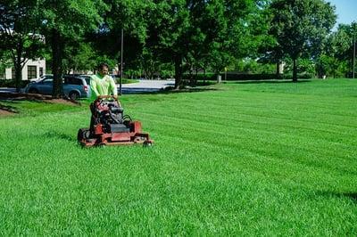 Commercial landscaper mowing grass