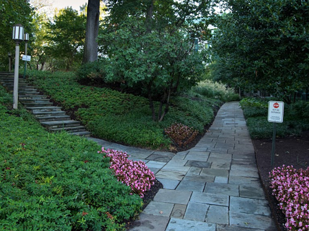Adding walkways throughout the property will improve their overall experience, while also allowing you to control the site traffic.