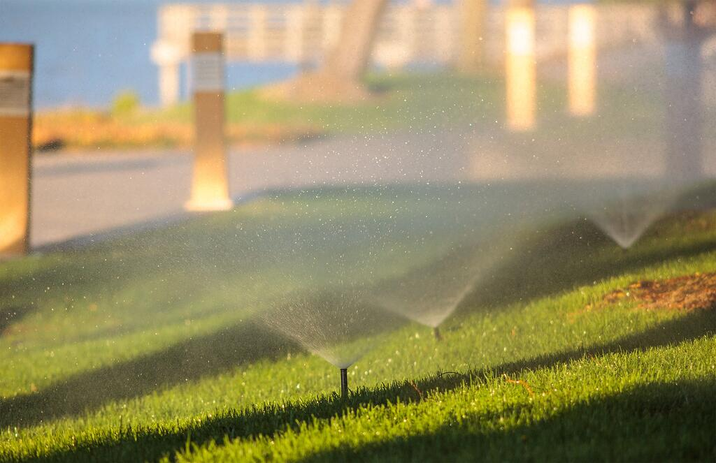 irrigation vs hand watering