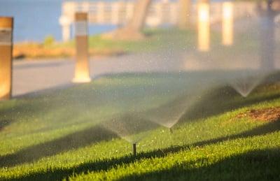 irrigation system running in summer heat