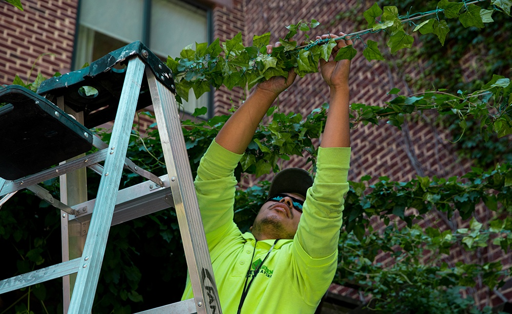 Is A Seasonal Landscaping Job Right For You?