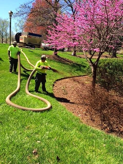 5 Spring Cleanup Services to Include in Your Commercial Landscape Maintenance Contract
