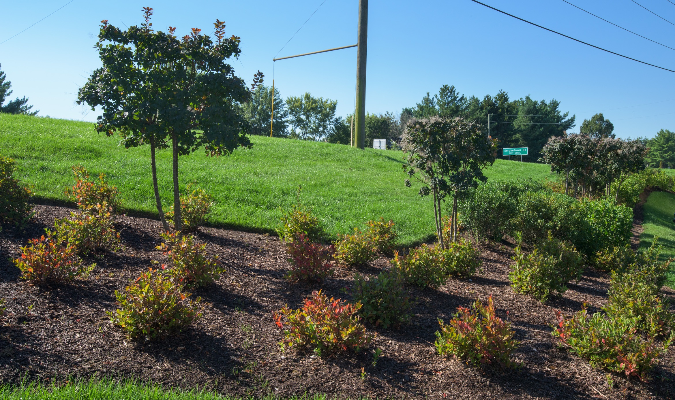 The Best Landscape Edging Tips For Commercial Properties