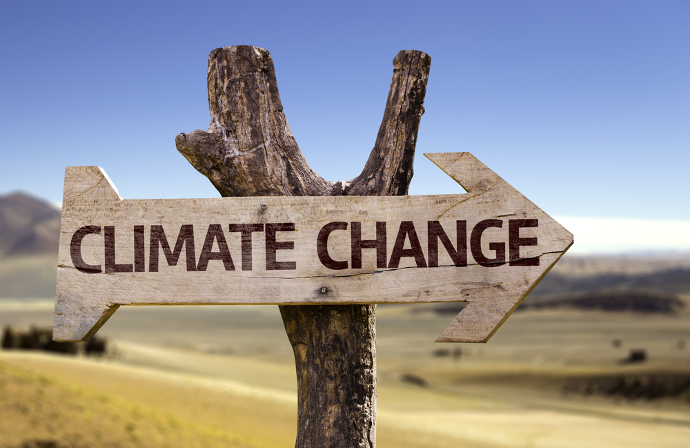 How Does Climate Change Impact Landscaping?