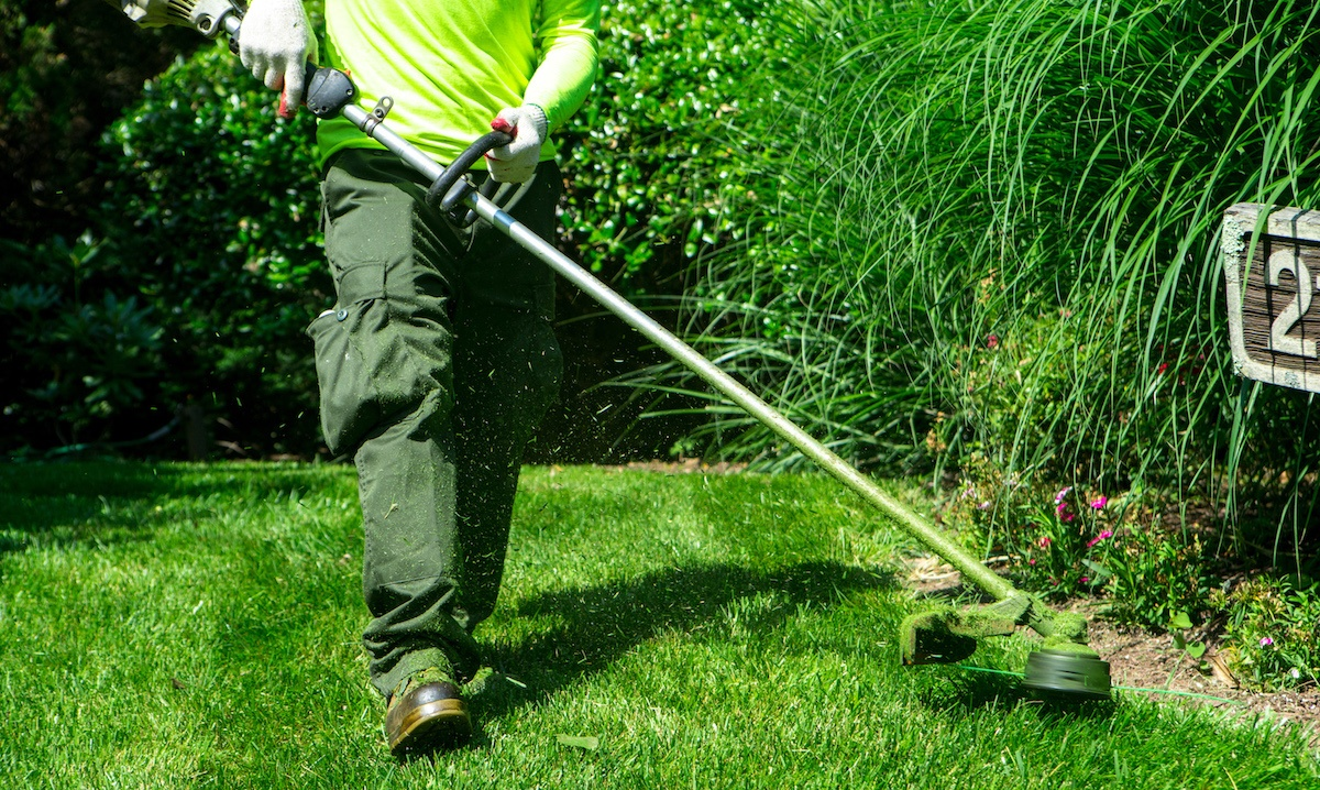 Certified Landscape Technician (CLT) - Why Is It So Important?